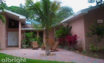 Front Entry Palm