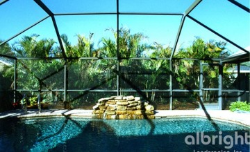 Palms Behind the Pool Cage